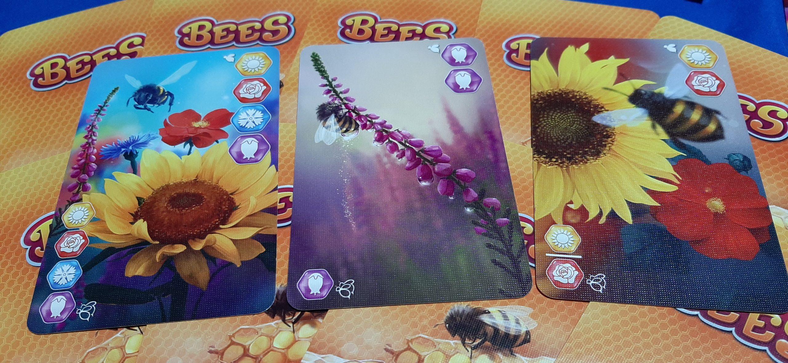 Bees: il reame segreto